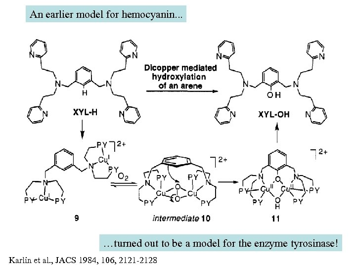 An earlier model for hemocyanin. . . …turned out to be a model for