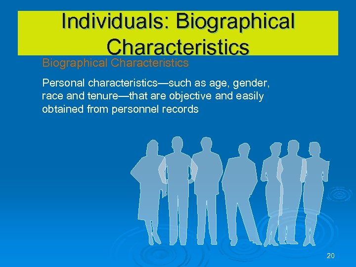 Individuals: Biographical Characteristics Personal characteristics—such as age, gender, race and tenure—that are objective and
