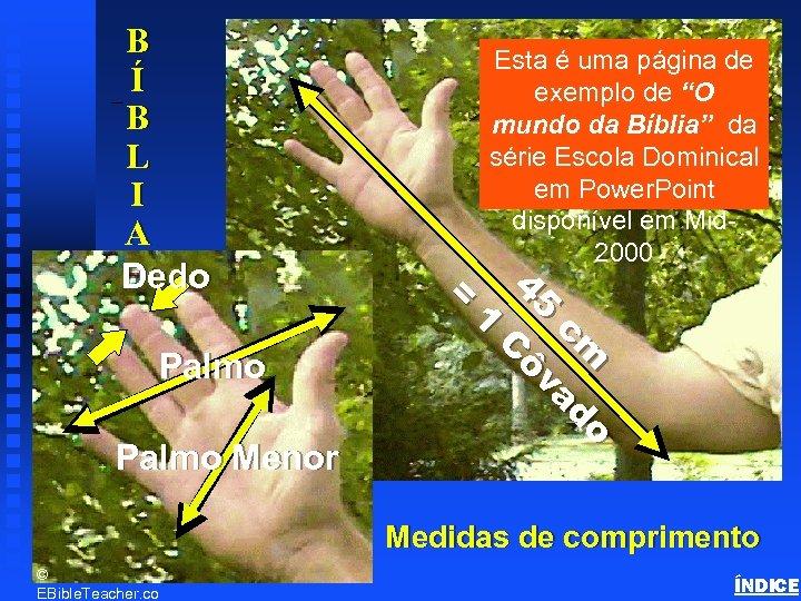 B Í B L I A Dedo Esta é uma página de exemplo de