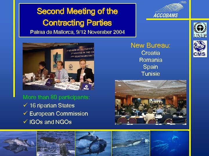 Second Meeting of the Contracting Parties Palma de Mallorca, 9/12 November 2004 New Bureau: