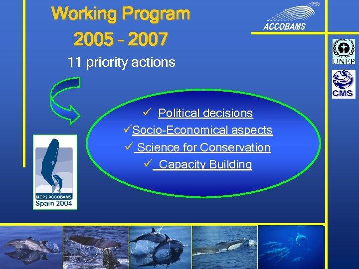 Working Program 2005 – 2007 11 priority actions ü Political decisions üSocio-Economical aspects ü
