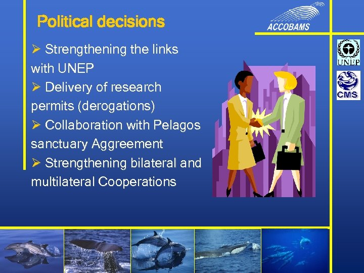 Political decisions Ø Strengthening the links with UNEP Ø Delivery of research permits (derogations)