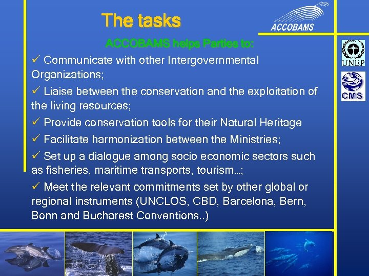 The tasks ACCOBAMS helps Parties to: ü Communicate with other Intergovernmental Organizations; ü Liaise