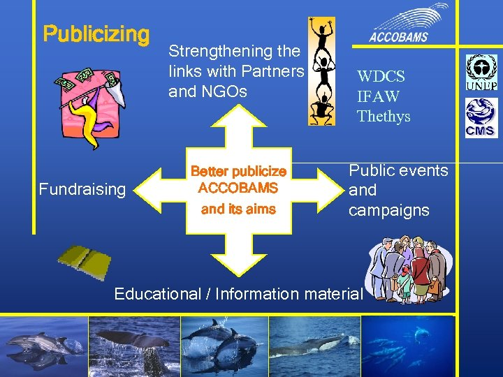 Publicizing Fundraising Strengthening the links with Partners and NGOs Better publicize ACCOBAMS and its
