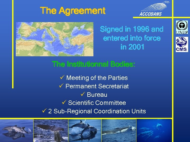 The Agreement Signed in 1996 and entered into force in 2001 The Institutionnal Bodies: