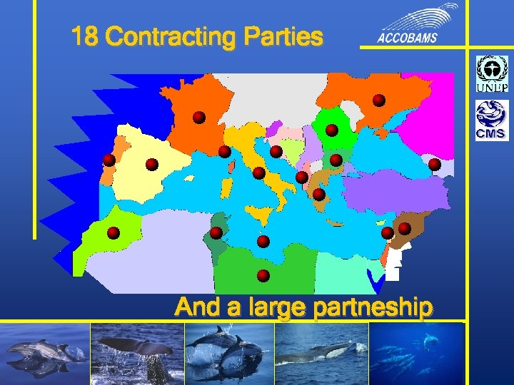 18 Contracting Parties And a large partneship