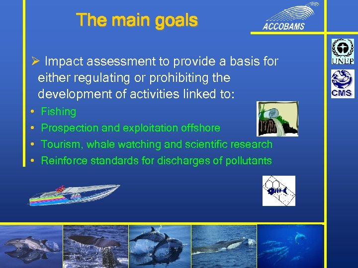 The main goals Ø Impact assessment to provide a basis for either regulating or