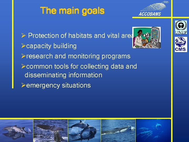 The main goals Ø Protection of habitats and vital areas Øcapacity building Øresearch and