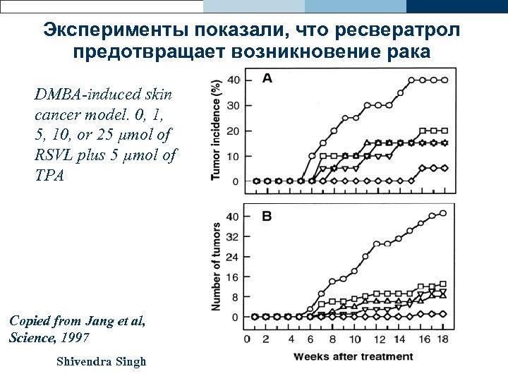Эксперименты показали, что ресвератрол предотвращает возникновение рака DMBA-induced skin cancer model. 0, 1, 5,