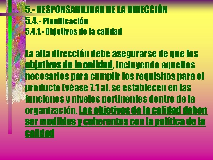 5. - RESPONSABILIDAD DE LA DIRECCIÓN 5. 4. - Planificación 5. 4. 1. -