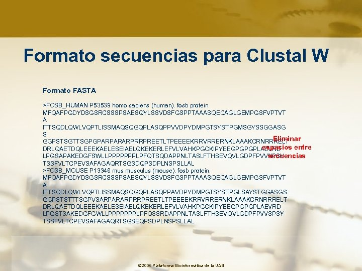Formato secuencias para Clustal W Formato FASTA >FOSB_HUMAN P 53539 homo sapiens (human). fosb