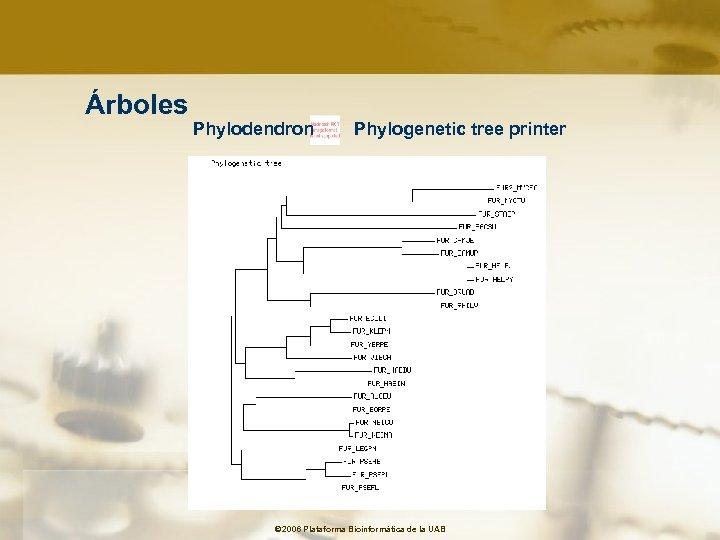 Árboles Phylodendron Phylogenetic tree printer © 2006 Plataforma Bioinformàtica de la UAB
