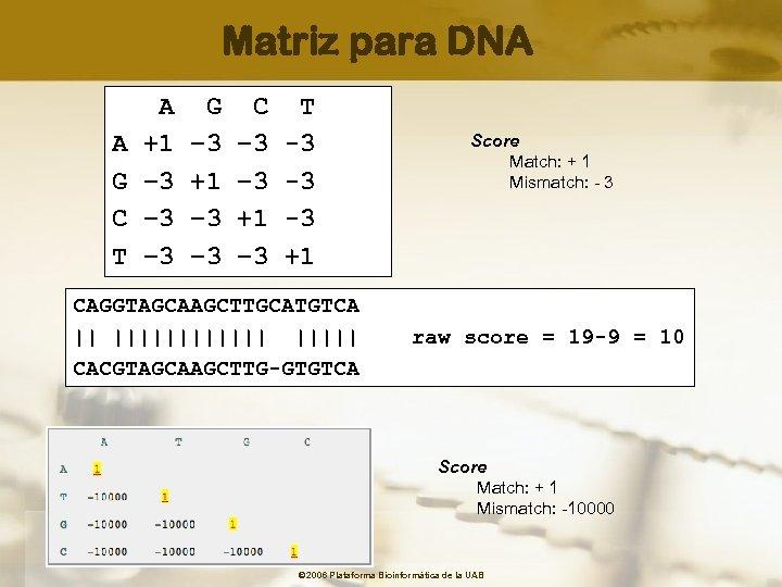 Matriz para DNA A G C T A +1 – 3 -3 G –