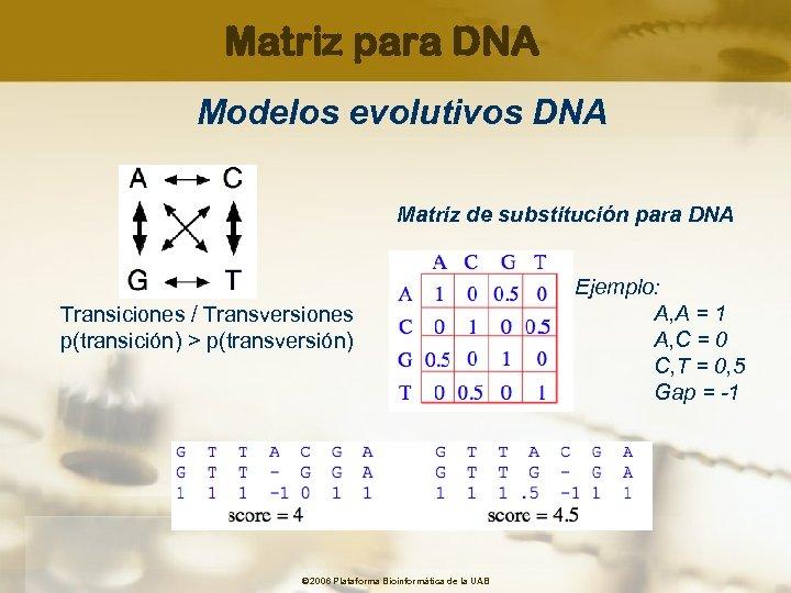 Matriz para DNA Modelos evolutivos DNA Matriz de substitución para DNA Transiciones / Transversiones
