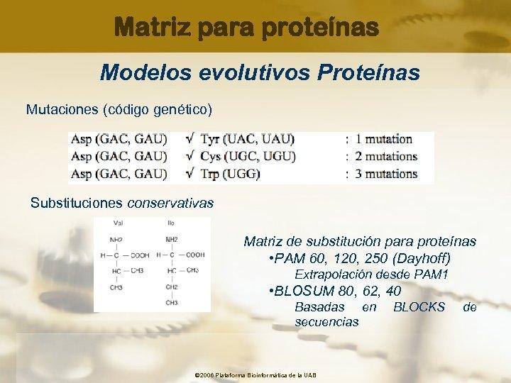 Matriz para proteínas Modelos evolutivos Proteínas Mutaciones (código genético) Substituciones conservativas Matriz de substitución