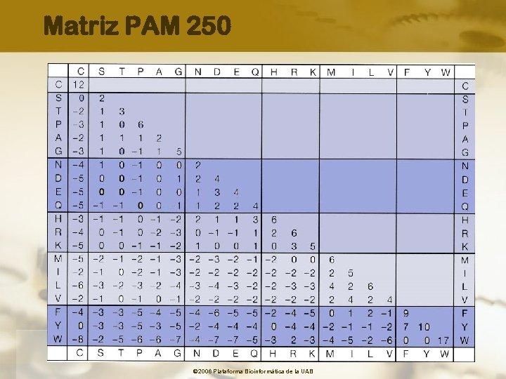 Matriz PAM 250 © 2006 Plataforma Bioinformàtica de la UAB