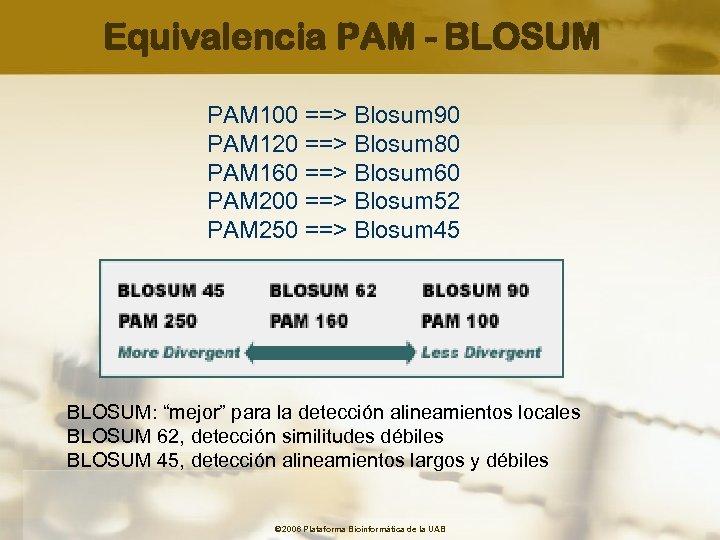 Equivalencia PAM - BLOSUM PAM 100 ==> Blosum 90 PAM 120 ==> Blosum 80