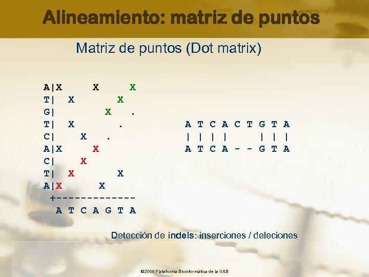 Alineamiento: matriz de puntos Matriz de puntos (Dot matrix) A|X X X T| X