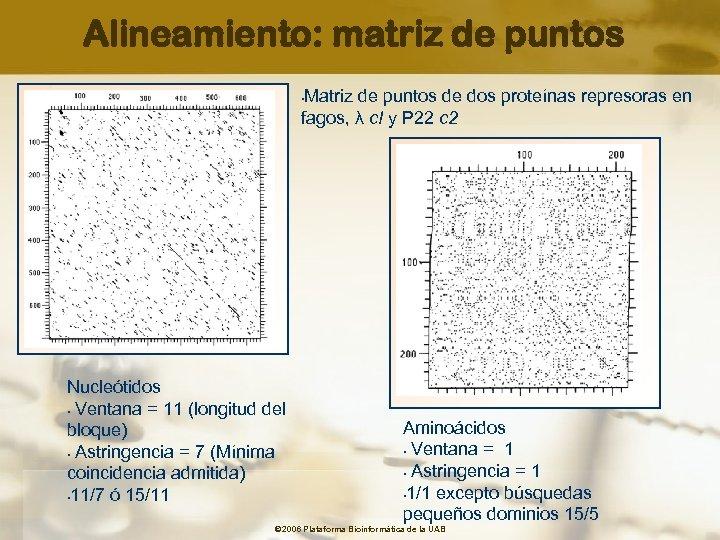 Alineamiento: matriz de puntos Matriz de puntos de dos proteínas represoras en fagos, λ