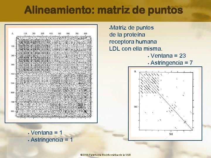 Alineamiento: matriz de puntos Matriz de puntos de la proteína receptora humana LDL con