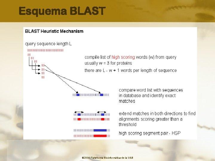 Esquema BLAST © 2006 Plataforma Bioinformàtica de la UAB