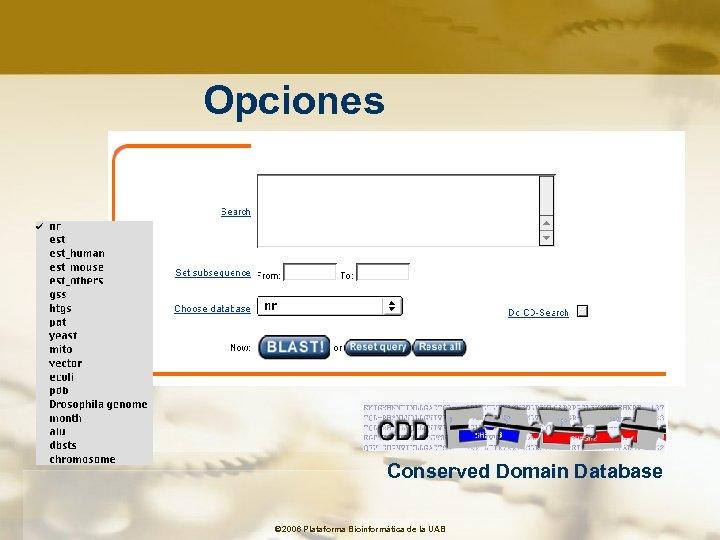 Opciones Conserved Domain Database © 2006 Plataforma Bioinformàtica de la UAB