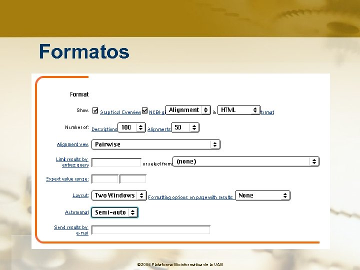 Formatos © 2006 Plataforma Bioinformàtica de la UAB