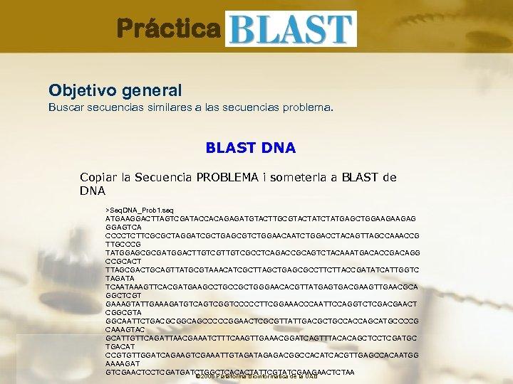 Práctica Objetivo general Buscar secuencias similares a las secuencias problema. BLAST DNA Copiar la