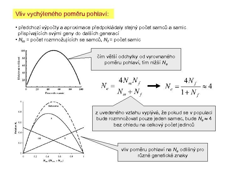 Vliv vychýleného poměru pohlaví: • předchozí výpočty a aproximace předpokládaly stejný počet samců a