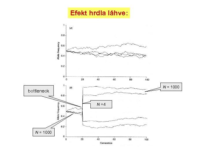 Efekt hrdla láhve: N = 1000 bottleneck N =4 N = 1000
