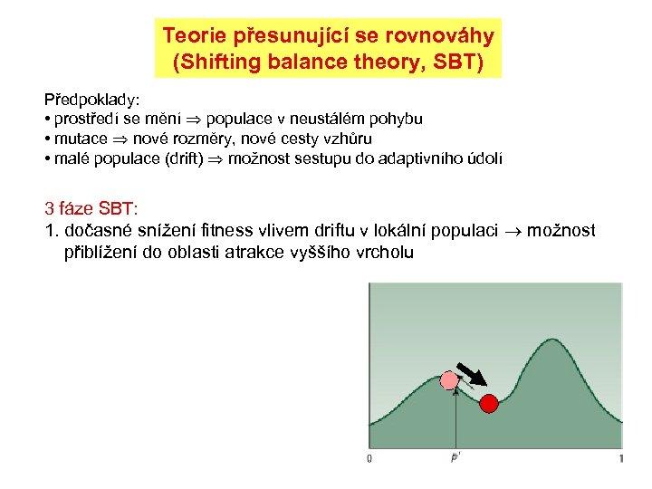 Teorie přesunující se rovnováhy (Shifting balance theory, SBT) Předpoklady: • prostředí se mění populace