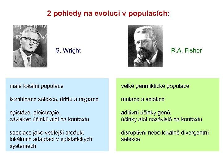 2 pohledy na evoluci v populacích: S. Wright R. A. Fisher malé lokální populace