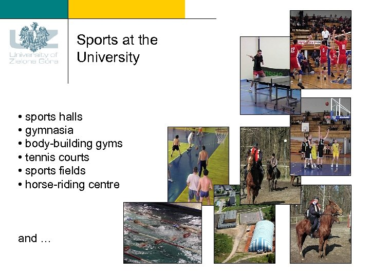 Sports at the University • sports halls • gymnasia • body-building gyms • tennis