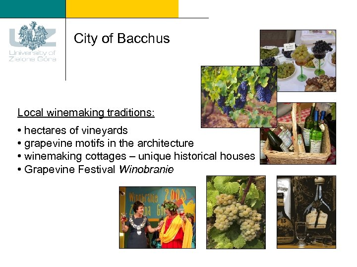 City of Bacchus Local winemaking traditions: • hectares of vineyards • grapevine motifs in