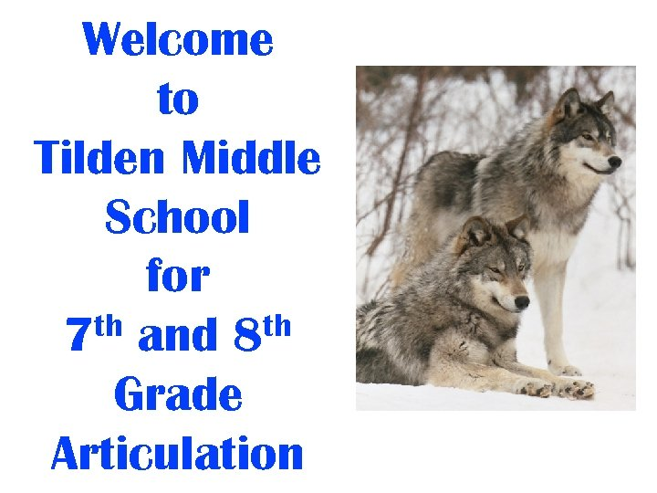 Welcome to Tilden Middle School for th and 8 th 7 Grade Articulation