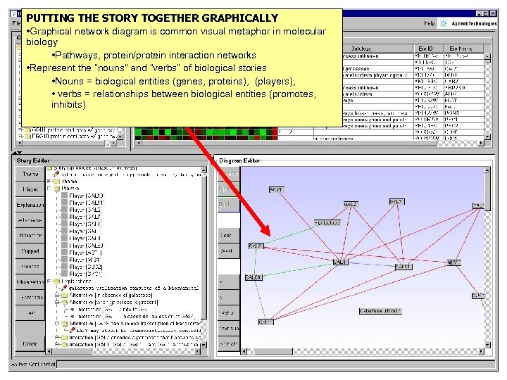 PUTTING THE STORY TOGETHER GRAPHICALLY • Graphical network diagram is common visual metaphor in