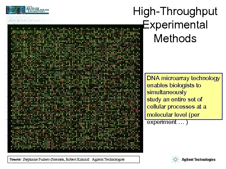 High-Throughput Experimental Methods DNA microarray technology enables biologists to simultaneously study an entire set