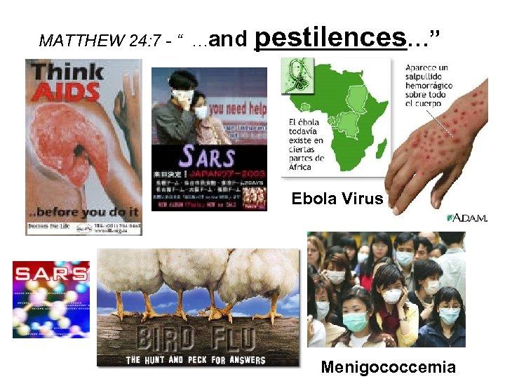 """MATTHEW 24: 7 - """" …and pestilences…"""" Ebola Virus Menigococcemia"""