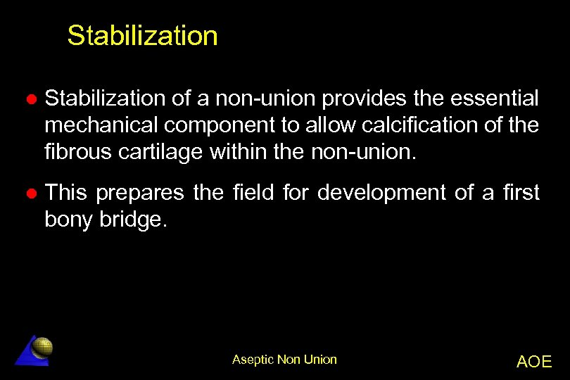 Stabilization l Stabilization of a non-union provides the essential mechanical component to allow calcification