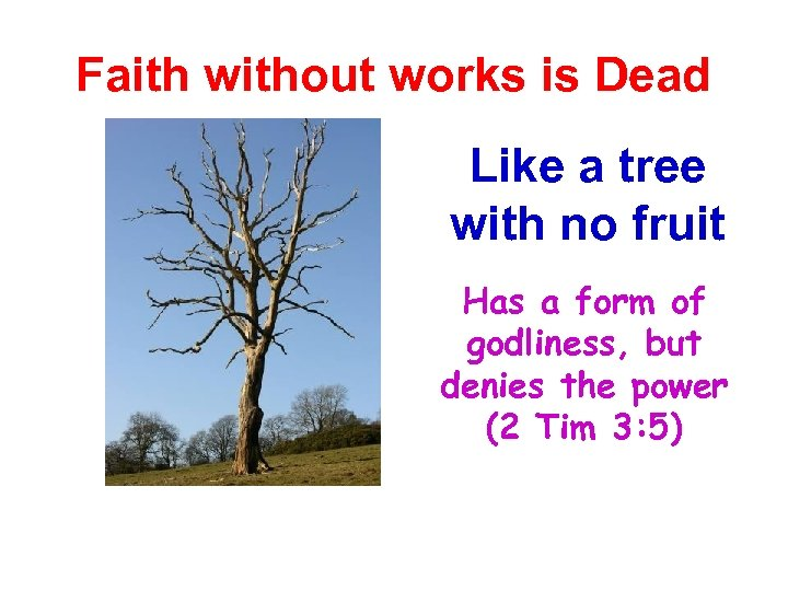 Faith without works is Dead Like a tree with no fruit Has a form