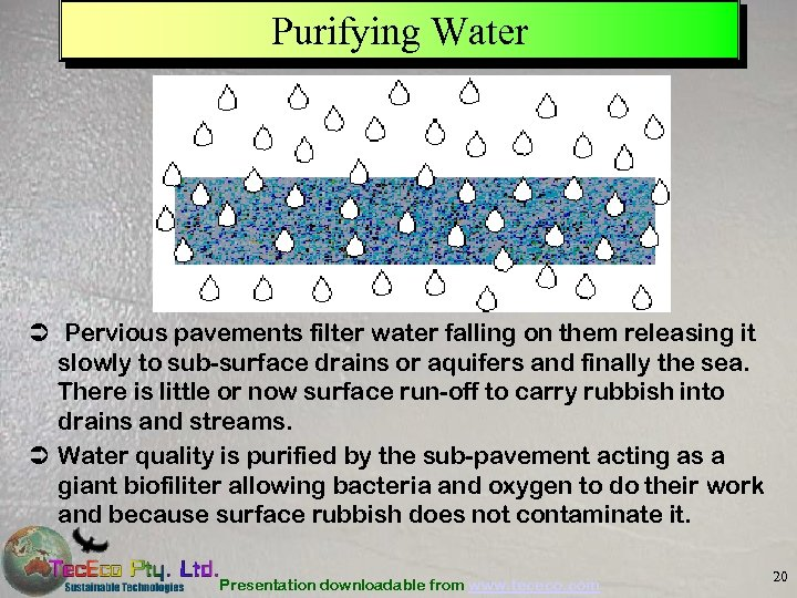 Purifying Water Ü Pervious pavements filter water falling on them releasing it slowly to
