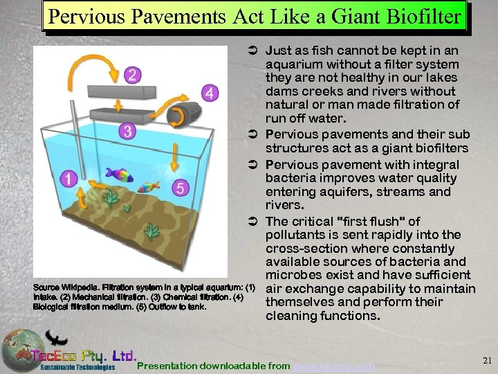 Pervious Pavements Act Like a Giant Biofilter Ü Just as fish cannot be kept