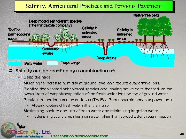 Salinity, Agricultural Practices and Pervious Pavement Native tree belts Deep rooted salt tolerent species