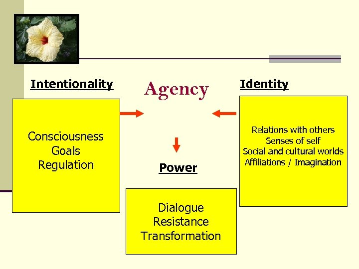 Intentionality Consciousness Goals Regulation Agency Power Dialogue Resistance Transformation Identity Relations with others Senses