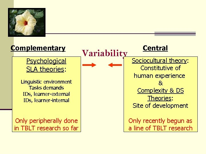 Complementary Psychological SLA theories: Linguistic environment Tasks demands IDs, learner-external IDs, learner-internal Only peripherally