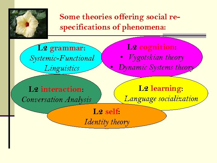 Some theories offering social respecifications of phenomena: L 2 grammar: Systemic-Functional Linguistics L 2