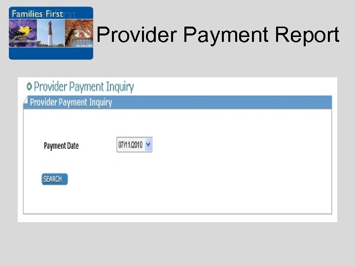 Provider Payment Report