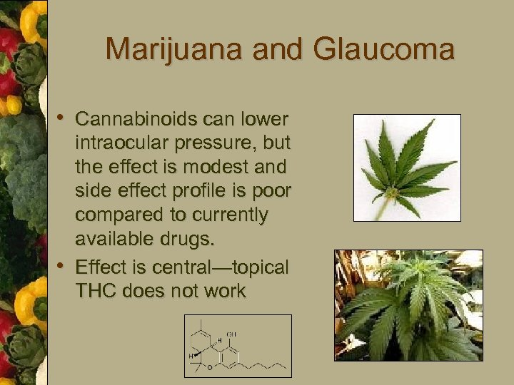 Marijuana and Glaucoma • Cannabinoids can lower • intraocular pressure, but the effect is
