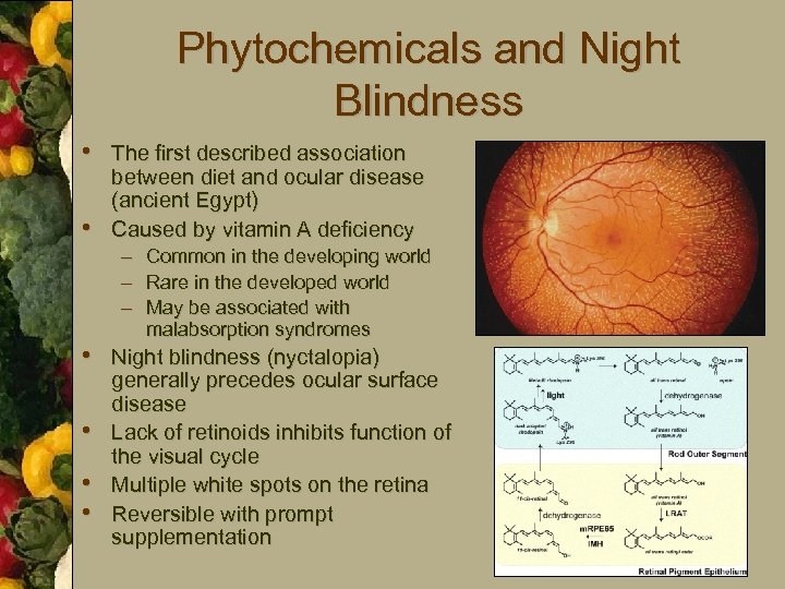 Phytochemicals and Night Blindness • The first described association • between diet and ocular