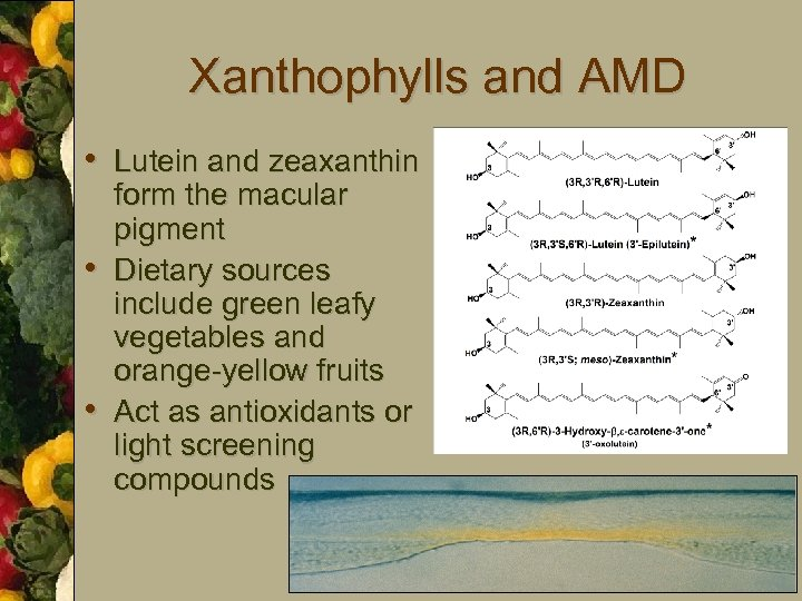 Xanthophylls and AMD • Lutein and zeaxanthin • • form the macular pigment Dietary